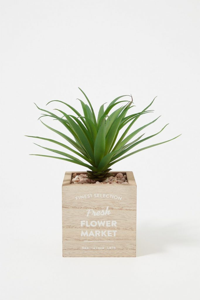 graphic wooden planter